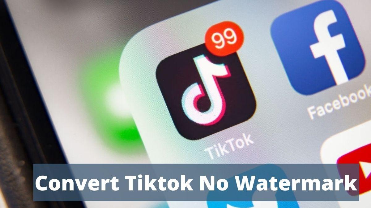 convert tiktok no watermark